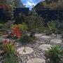 Gravel_garden_2