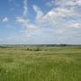 Linton Wind Farm site