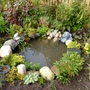 The pond now.  All planted up and finished (for now!)