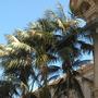 Balboa_park_05_03_12_48_