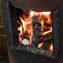 wood burner in greenhouse