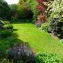 The Bottom garden 08.05.12
