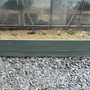 Alpine Raised Bed 