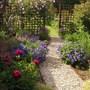 An update on the garden.