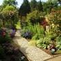 garden 2011 2