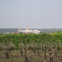 View of Canterbury Cathedral from the Apple Orchards