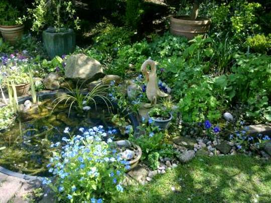 Pond in Dappled Sunlight and shade.