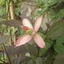 20_may_2012_003