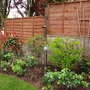 Cottage garden mixed border