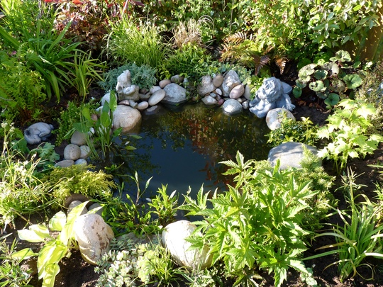 Pond latest...more pebbles added to hide the liner....