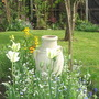 tulips,wall flowers and forget me nots in spring
