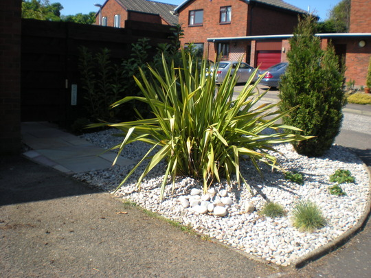 low maintenance front garden grows on you On low maintenance front garden
