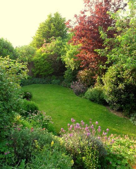 Evening Sunlight in the Bottom garden 28.05.12