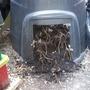 compost check