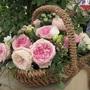 Chelsea Flower Show 2012 - Rose Basket