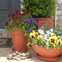 My_gardening_002