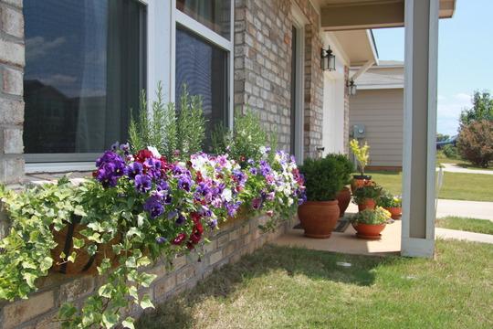 Flower buskets