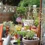 A few improvements to the Mediterranean Garden...