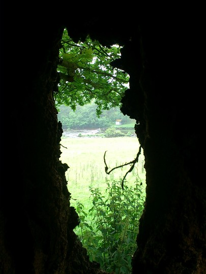 River Usk from inside an oak tree