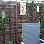 Hoping the Jasmine and Passion Flower will fill the fence:)
