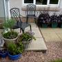 New basket of herbs at patio door.