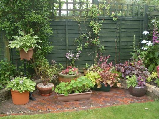 A few Pots