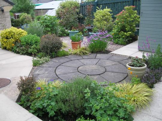 back garden...healthy but boring !
