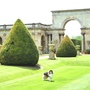 CASTLE ASHBY   ............  Italian Gardens