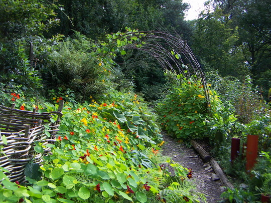 Ruskin's garden