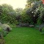 Evening in the bottom garden