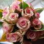 Bridesmaid's rose bouquet