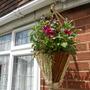 Hanging Basket from Morrisons
