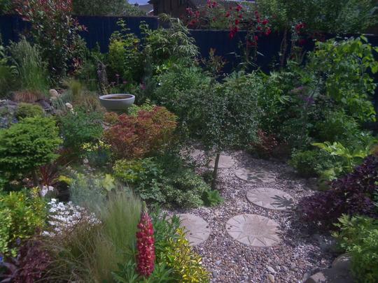 Gravel garden done