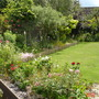 Woodview's back garden