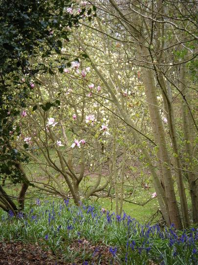 Spring colour combination