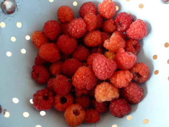 Raspberries  , first ones 2012