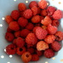 Raspberries  , first ones 2012