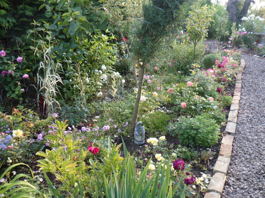 020 The 'Rose Garden' Border