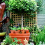 Plaited Bay and Pots....
