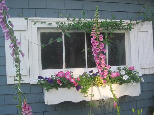 windowbox on garage