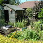 Shed and garden