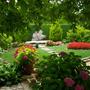 Private garden - Portugal