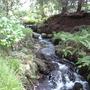 Waterfall at Bodnant Gardens
