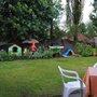 Back Garden - July 2012