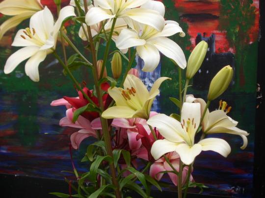 lucys lillies