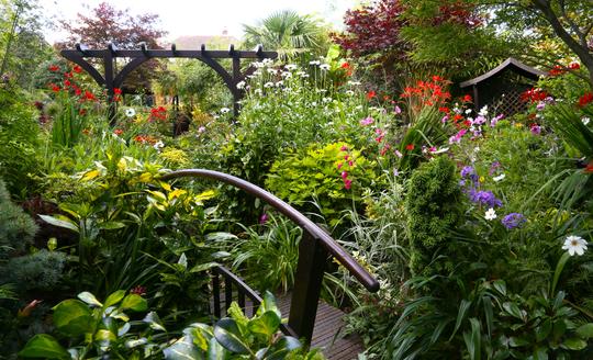 Lower garden 30 July 2012