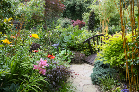 Middle garden 25 July 2012