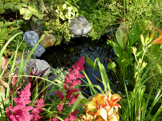 For Pansypotter...the pond today