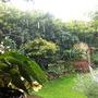 Rain Rain go away....