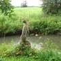 Beautiful Otter sculpture